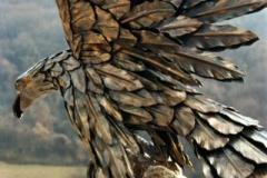 Aquila4